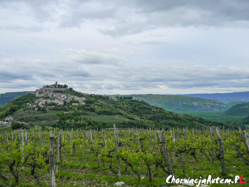 Motovun Istria top 10 atrakcji
