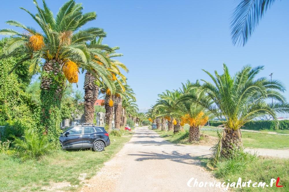Kastel Gomilica obok Splitu, Chorwacja autem