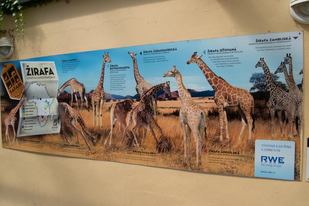 Zoo Ołomuniec